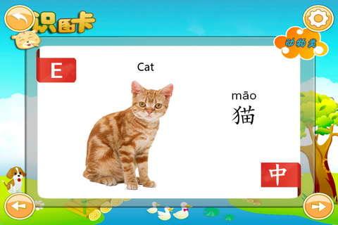 宝宝动物识图_1.3学习
